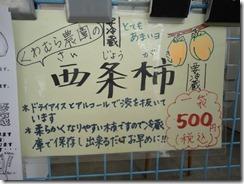 DSC04000