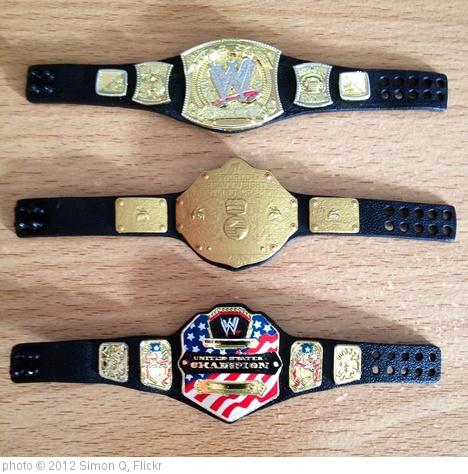 World Title Belt World Heavyweight Title