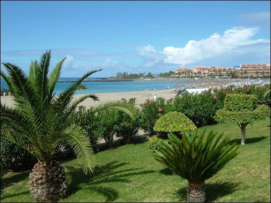 zee-met-palmbomen