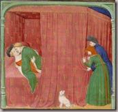 Les mystères de la procréation BNF 9141