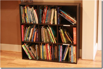 Make a home book shelf for citizen books.