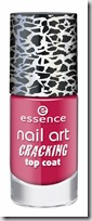 ess_CrackingTopCoat09