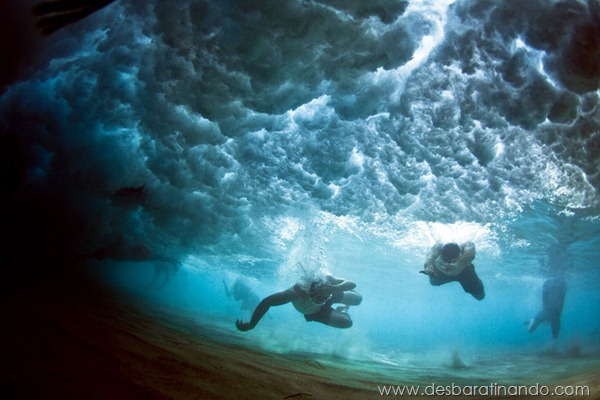 the-underwater-project-mark-tipple-fotos-submersas-nadando-lutando-oceano-mar-desbaratinando (2)