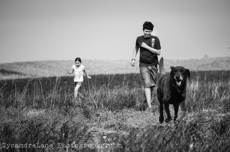 SycamoreLane Photography-home 2014
