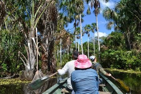 Prin jungla amazoniana din Peru