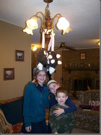 possum chandelier
