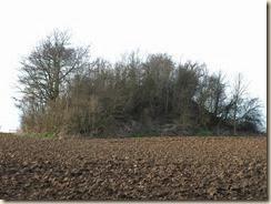 Momalle: tumulus van Noville. De tumulus ligt op het grondgebied van Momalle, deelgemeente van Remicourt, maar vlakbij Noville, deelgemeente van Fexhe-le-haut-Clocher