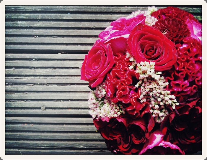 3620 fairy nuff flowers