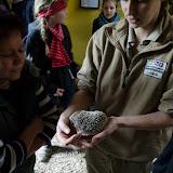 Heidelberger-Zoo (19 von 49).jpg