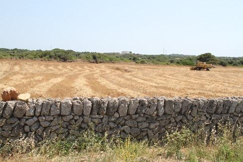 Menorca 2013 030