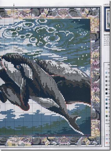 graficos gratis ponto cruz-fundo do mar-12