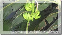 Kos Bananen