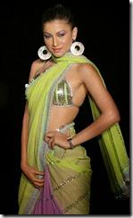 gauhar-khan-sari-picture-0021