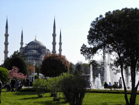 Obiective turistice Istanbul: Sultanahmet - Moscheea Albastra