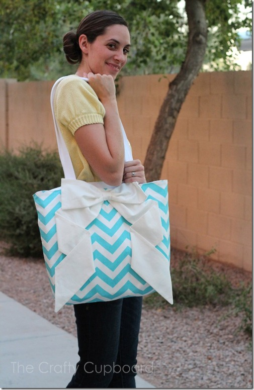 Zig Zag Bag