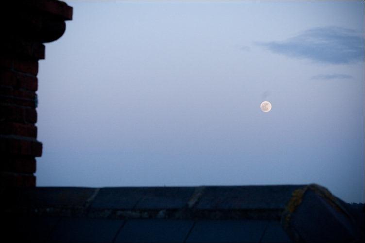 luna-01a