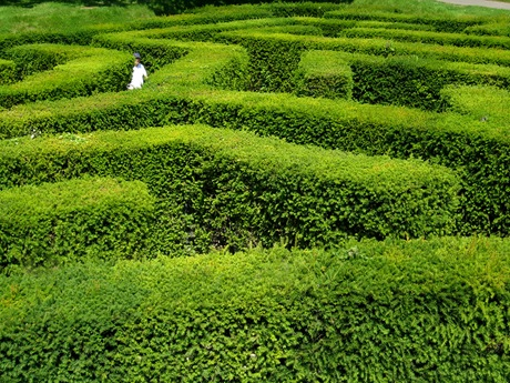 Leeds Maze