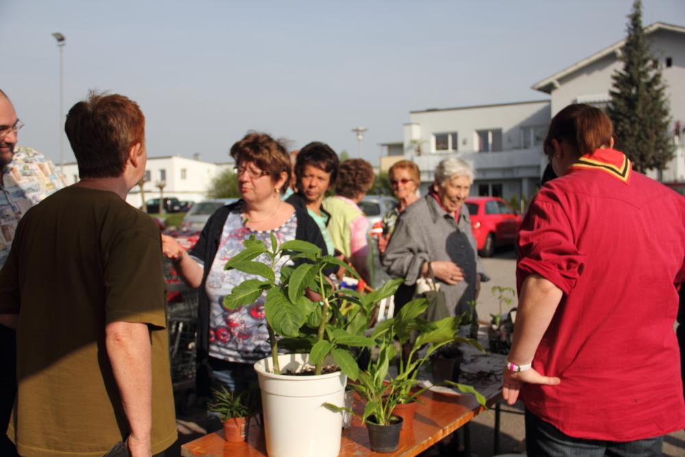 Pflanzerltauschmarkt 2013 - Bildergalerie