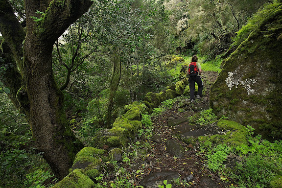 Camino de Jinama, camino histórico, siglo XVII, el Golfo, Frontera, Isla del Hierro, Canarias