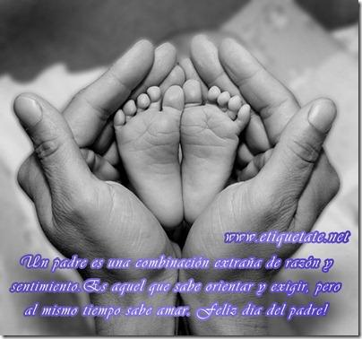dia del padre 14febrero-net (15)