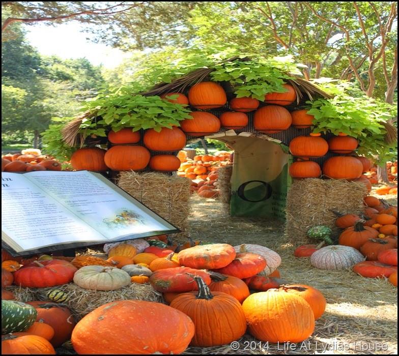 Dallas Arboretum - pumpkin festival-pumpkin house 2