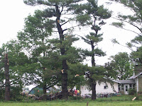 Damage on 111th Avenue in Henry County