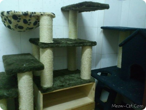 how to building cat tree 1