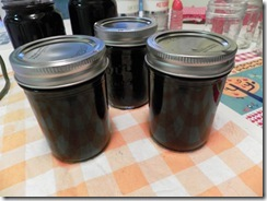blueberry ginger jam 02