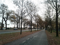 IMG_20111126_084107.jpg Photo