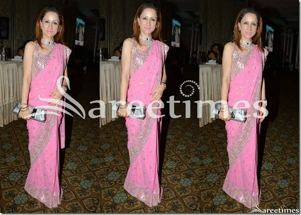 Rouble_Nagi_Pink_Saree