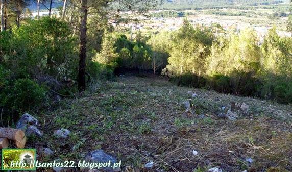 Limpeza área cabos elétriocs - Serra Ota
