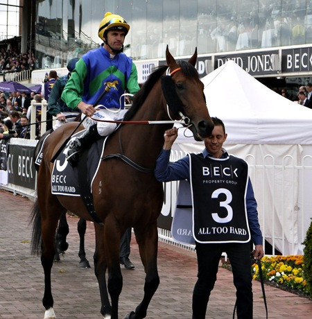 all too hard_guineas