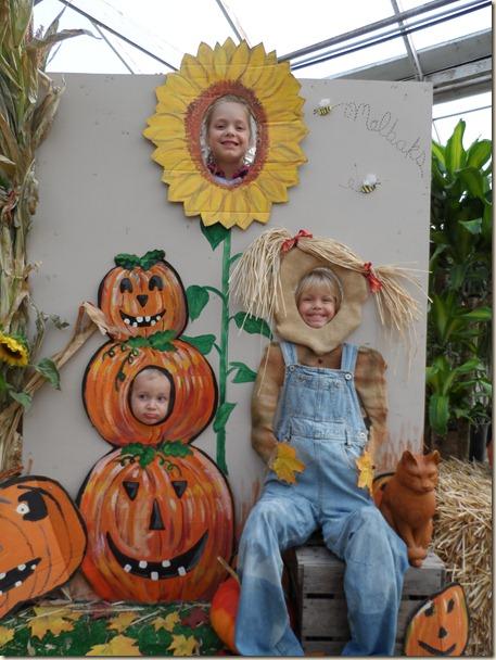 10-17 3 pumpkins