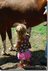 Oliver horse show 182