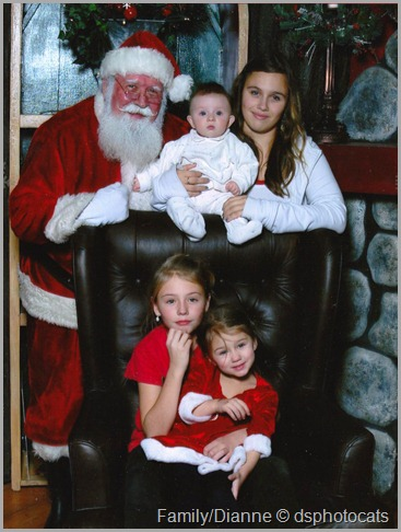 The girls and Santa 2011