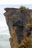 Pancake Rocks -- Punakaiki, New Zealand