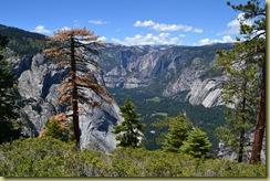 Panorama View-1