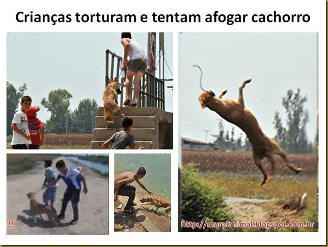 Crianças torturam e tentam afogar cachorro