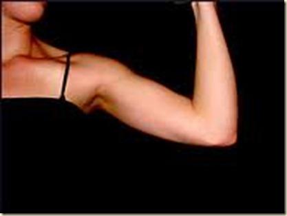 Dieta para aumentar masa muscular y quemar grasa estudio reciente, que