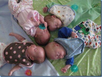 quad babies