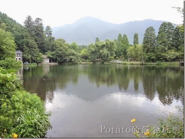 由布院金鱗湖走累了,到湖畔的Cafe La Ruche 喝下午茶