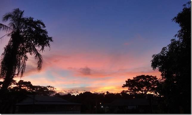 Pantanal_DSC08554