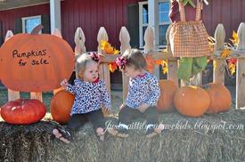 10-29-12_Pumpkin-Patch2