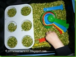 green sensory box