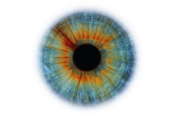 beleza dos olhos (1).jpg