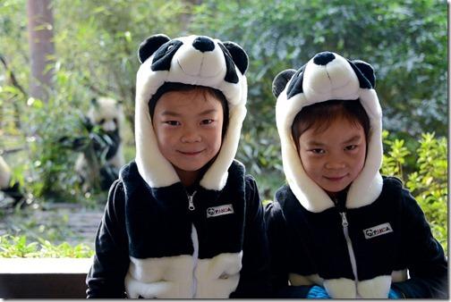 DSC_7139LR_Pandas