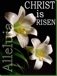 easter-lily-christ-risen-free-photo-clipart1