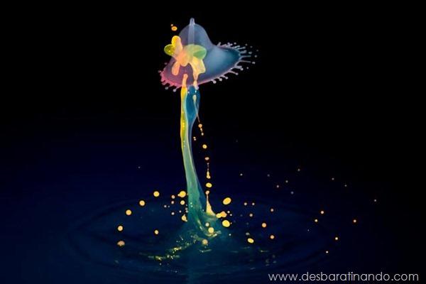 liquid-drop-art-gotas-caindo-foto-velocidade-hora-certa-desbaratinando (162)