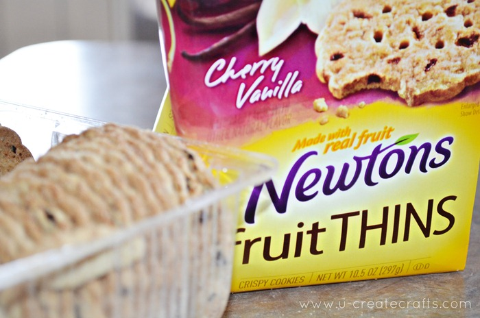 Newtons Fruit Thins Review