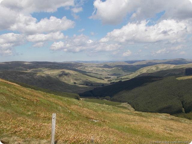 ettrick valley